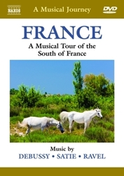 Various - A Musical...
