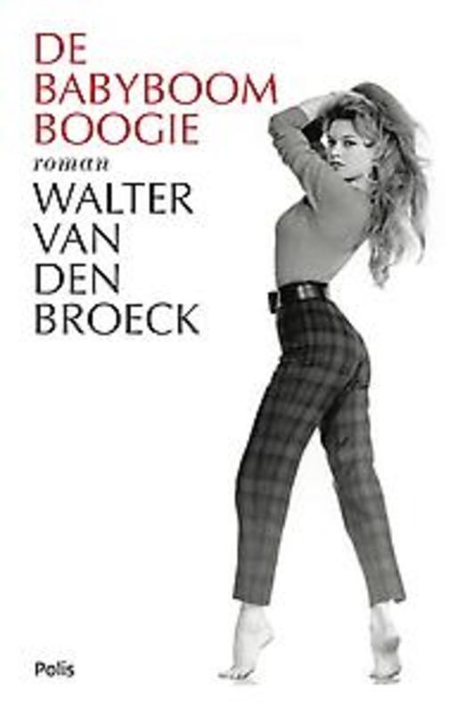 De babyboomboogie roman, Walter van Broeck, Hardcover