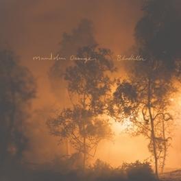 BLINDFALLER MANDOLIN ORANGE, CD