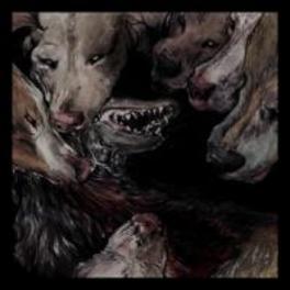 NIGHT JERKS OKKULTOKRATI, CD