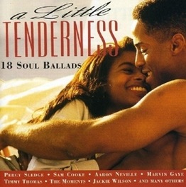 A LITTLE TENDERNESS 18 SOUL BALLADS W/PERCY SLEDGE/SAM COOKE/AARON NEVILLE/ Audio CD, V/A, CD