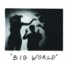 BIG WORLD LP + DOWNLOAD HAPPY DIVING, Vinyl LP