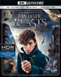 Fantastic beasts and where to find them, (Blu-Ray 4K Ultra HD). BRUHD