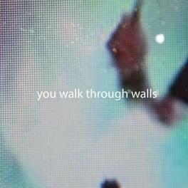 WALLS YOU WALK THROUGH WALLS, LP