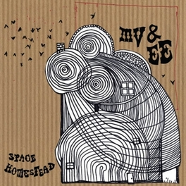 SPACE HOMESTEAD MV & EE, LP