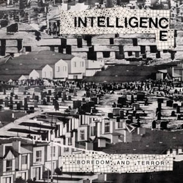 BOREDOM AND TERROR/.. .. LET'S TOIL INTELLIGENCE, Vinyl LP