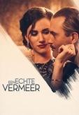 Een echte Vermeer, (DVD)