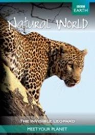 BBC earth - The invisible leopard, (DVD) DVDNL