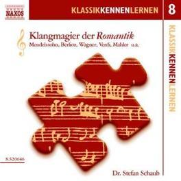 KLANGMAGIER DER ROMANTIK STEFAN SCHAUB, CD