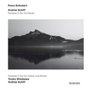 FANTASIE IN C DUR FOR PIA ...PIANO & VIOLIN/W/YUUKO SHIOKAWA, ANDRAS SCHIFF
