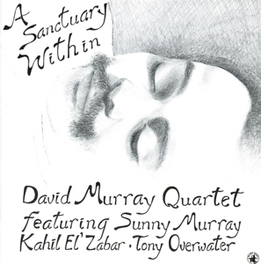 A SANCTUARY WITHIN Audio CD, DAVID MURRAY, CD