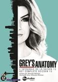 Grey's anatomy - Seizoen 13, (DVD) BILINGUAL /CAST: ELLEN POMPEO, JUSTIN CHAMBERS