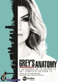 Grey's anatomy - Seizoen 13, (DVD) BILINGUAL /CAST: ELLEN POMPEO, JUSTIN CHAMBERS DVDNL