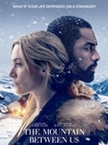 Mountain between us, (DVD) BILINGUAL /CAST: IDRIS ELBA, KATE WINSLET