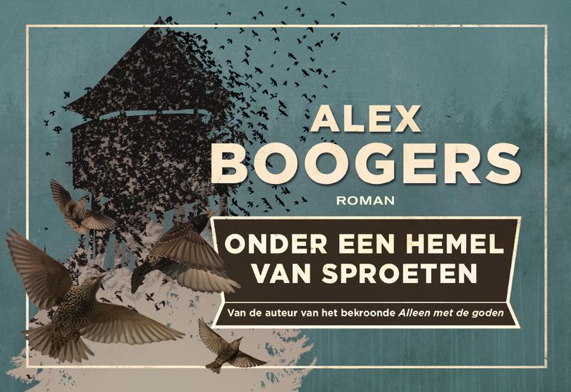 Onder een hemel van sproeten DL Alex Boogers, Paperback