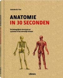 Anatomie in 30 seconden...