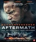Aftermath, (Blu-Ray)