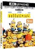 Minions, (Blu-Ray 4K Ultra HD)