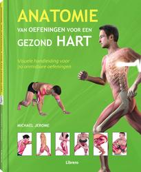 Anatomie van oefeningen...