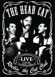 ROCKIN' THE CAT CLUB