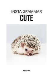 Insta Grammar Cute