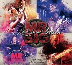 Mr Big - Live From Milan,...
