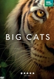 Big cats - Seizoen 1 , (DVD)