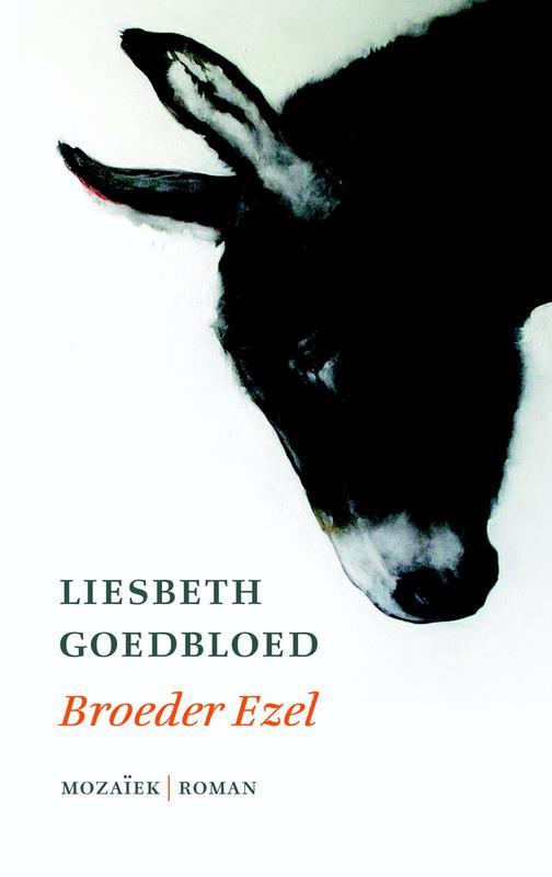 Broeder ezel Liesbeth Goedbloed, Hardcover