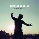BLACK VELVET -DIGI-
