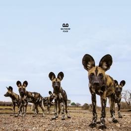 FEVER -DOWNLOAD- BALTHAZAR, Vinyl LP