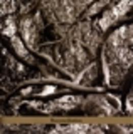 RECONCILIATION Audio CD, DAPHNA SADEH, CD