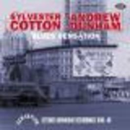 BLUES SENSATION DETROIT DOWNHOME RECORDINGS 1948-49 Audio CD, SYLVESTER/ANDREW COTTON, CD