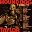 HOUND DOG TAYLOR W/ LUTHER ALLSION, ELVIN BISHOP, GEORGE THOROGOOD,