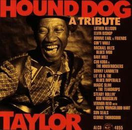 HOUND DOG TAYLOR W/ LUTHER ALLSION, ELVIN BISHOP, GEORGE THOROGOOD, Audio CD, HOUND DOG TAYLOR, CD