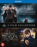 Fantastic beasts 1&2,...
