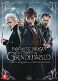 Fantastic beasts - The crimes of Grindelwald , (DVD) .. CRIMES OF GRINDELWALD /BILINGUAL/CAST: EDDIE REDMAYN Rowling, J.K., DVDNL