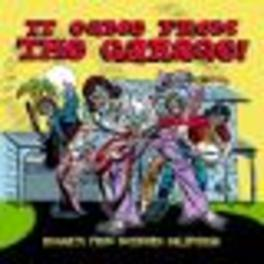 IT CAME FROM THE GARAGE NUGGETS FROM SOUTHERN CALIFORNIA/MITCH O'CONNELL ART!!! Audio CD, V/A, CD