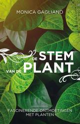 De stem van de plant