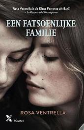 Een fatsoenlijke familie Ventrella, Rosa, Ebook