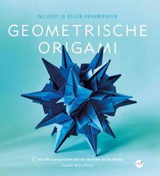De kunst van Geometrische...