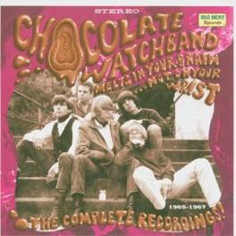 MELTS IN YOUR.. ..ON YOUR WRIST, COMPLETE RECORDINGS Audio CD, CHOCOLATE WATCHBAND, CD