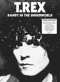 DANDY IN THE UNDERWORLD 3...