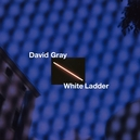 WHITE LADDER -DELUXE- 20TH...