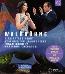 WALDBUHNE 2019 - MIDSUMME