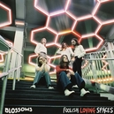 FOOLISH LOVING.. -DELUXE- .. SPACES