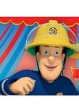 Brandweerman Sam S10 - D4, (DVD)
