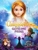 Assepoester en de geheime prins, (DVD)