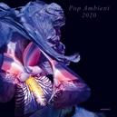 POP AMBIENT.. -DOWNLOAD- .....