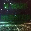 MIGRATION STORIES -DIGI-