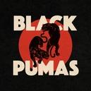 BLACK PUMAS -BONUS TR-...